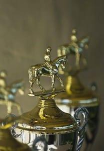 Equine Trophy